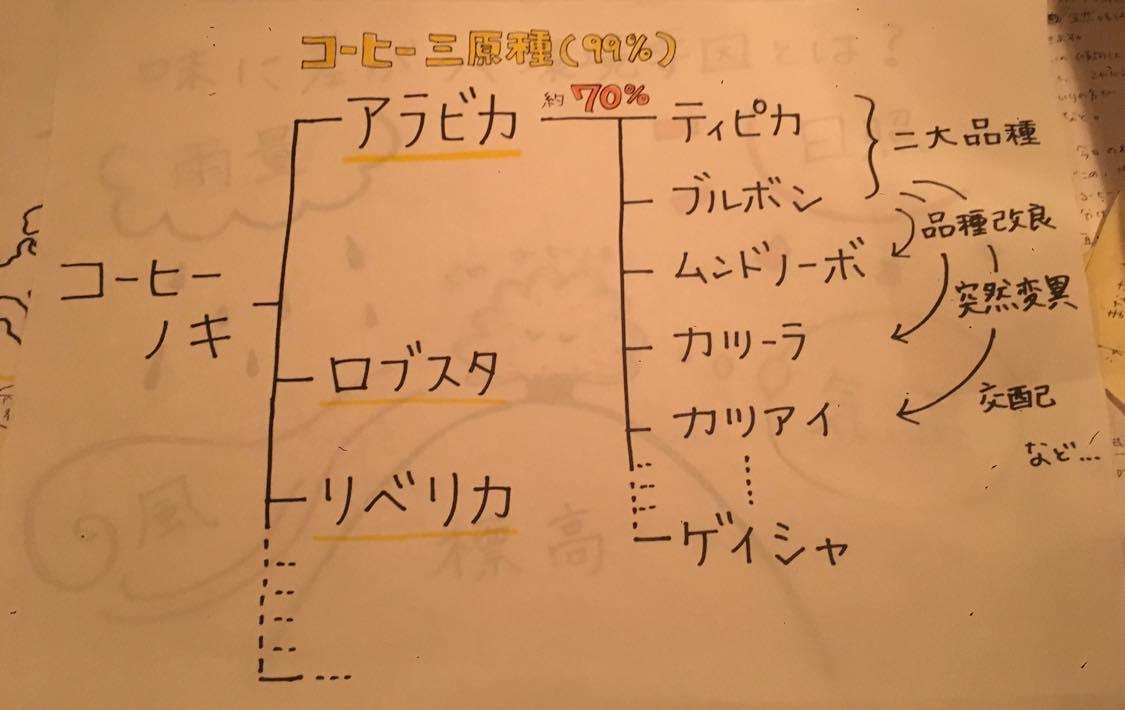カフェケシパール_image1(6)
