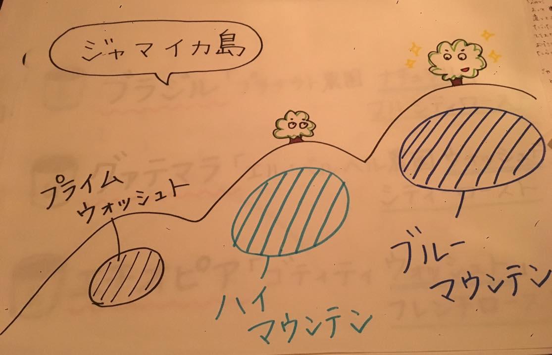 カフェケシパール_image3(1)