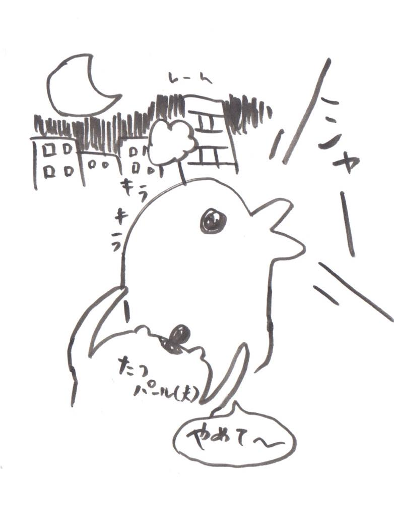 カフェケシパール_しゃー